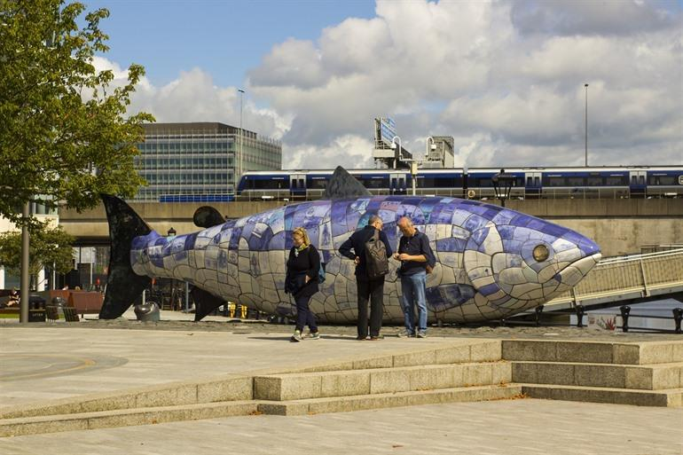 Big Fish of Salmon of Knowledge Belfast
