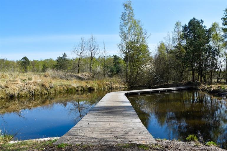 Nationaal Park van de Hoge Kempen