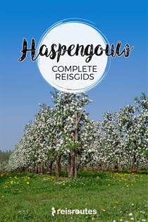 Reisgids Haspengouw gratis downloaden PDF [ebook]