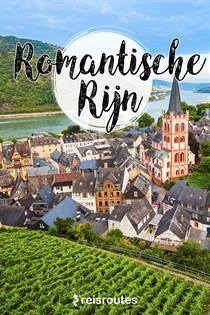 Reisgids Rijn gratis downloaden PDF [ebook]